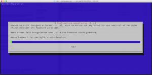 Root-Passwort festlegen